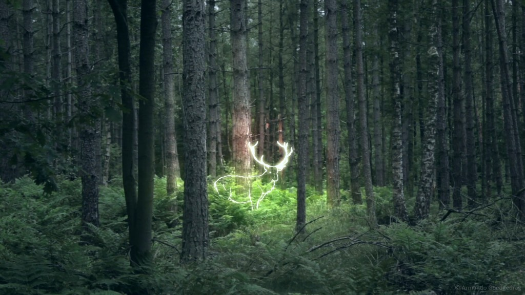 the_living_forest_3